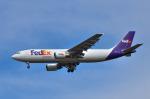 パンダさんが、成田国際空港で撮影したフェデックス・エクスプレス A300F4-605Rの航空フォト(写真)