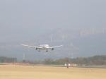 わたくんさんが、熊本空港で撮影した全日空 787-8 Dreamlinerの航空フォト(写真)