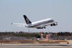 アイスコーヒーさんが、成田国際空港で撮影したシンガポール航空 A380-841の航空フォト(飛行機 写真・画像)