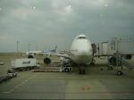kouta@itmさんが、羽田空港で撮影した全日空 747-481(D)の航空フォト(写真)