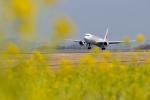 kukkuさんが、高松空港で撮影した日本航空 767-346/ERの航空フォト(写真)