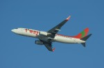 しんさんが、新千歳空港で撮影したティーウェイ航空 737-8Q8の航空フォト(写真)