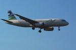 rjnsphotoclub-No.07さんが、静岡空港で撮影したスカイウィングス・アジア・エアラインズ A320-231の航空フォト(飛行機 写真・画像)