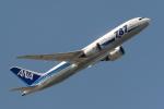 おにYさんが、羽田空港で撮影した全日空 787-8 Dreamlinerの航空フォト(写真)