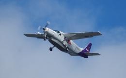 シアトル タコマ国際空港 - Seattle–Tacoma International Airport [SEA/KSEA]で撮影されたシアトル タコマ国際空港 - Seattle–Tacoma International Airport [SEA/KSEA]の航空機写真