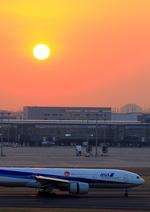 ふじいあきらさんが、羽田空港で撮影した全日空 777-281/ERの航空フォト(飛行機 写真・画像)