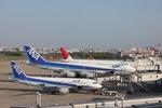 ふじいあきらさんが、福岡空港で撮影した全日空 A320-211の航空フォト(写真)
