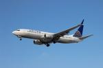 uhfxさんが、オヘア国際空港で撮影したユナイテッド航空 737-824の航空フォト(飛行機 写真・画像)