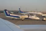 uhfxさんが、羽田空港で撮影したANAウイングス DHC-8-314Q Dash 8の航空フォト(飛行機 写真・画像)