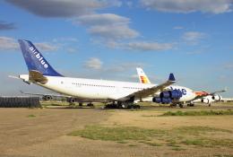 TKBKさんが、フェニックス・グッドイヤー空港で撮影したエア・ブルー A340-313Xの航空フォト(飛行機 写真・画像)