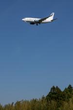 パンダさんが、成田国際空港で撮影したBBJ One 737-7CJ BBJの航空フォト(写真)