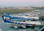 SKYLINEさんが、羽田空港で撮影した全日空 747-481(D)の航空フォト(飛行機 写真・画像)