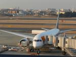 anothersky777さんが、伊丹空港で撮影した全日空 787-8 Dreamlinerの航空フォト(写真)