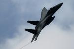 take_2014さんが、新田原基地で撮影した航空自衛隊 F-15J Eagleの航空フォト(飛行機 写真・画像)