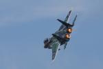 take_2014さんが、新田原基地で撮影した航空自衛隊 F-15DJ Eagleの航空フォト(写真)
