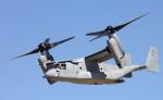 ルーク空軍基地 - Luke Air Force Base [LUF/KLUF]で撮影されたアメリカ海兵隊 - United States Marine Corpsの航空機写真
