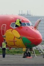 うめやしきさんが、羽田空港で撮影したダニッシュ・エア・トランスポート MD-83 (DC-9-83)の航空フォト(飛行機 写真・画像)