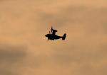 new_2106さんが、新田原基地で撮影したアメリカ海兵隊 MV-22Bの航空フォト(飛行機 写真・画像)