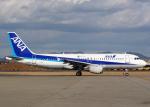 Bokuranさんが、名古屋飛行場で撮影した全日空 A320-211の航空フォト(写真)