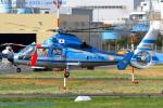 Chofu Spotter Ariaさんが、東京ヘリポートで撮影した福岡県警察 AS365N2 Dauphin 2の航空フォト(飛行機 写真・画像)