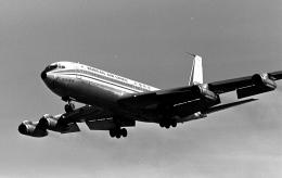 チャーリーマイクさんが、福岡空港で撮影した大韓航空 707-338Cの航空フォト(飛行機 写真・画像)