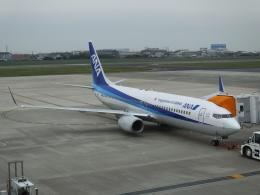 tachigennmaiさんが、松山空港で撮影した全日空 737-881の航空フォト(飛行機 写真・画像)