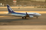 アイスコーヒーさんが、成田国際空港で撮影した全日空 737-781の航空フォト(写真)