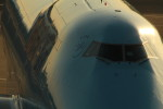 アイスコーヒーさんが、成田国際空港で撮影した大韓航空の航空フォト(写真)