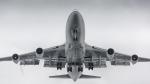 Piggy7119さんが、上海虹橋国際空港で撮影した中国国際航空 747-4J6の航空フォト(写真)