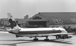 チャーリーマイクさんが、伊丹空港で撮影したタイ国際航空 DC-8-33の航空フォト(飛行機 写真・画像)