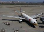 そばぬこさんが、羽田空港で撮影した中国国際航空 A330-243の航空フォト(写真)