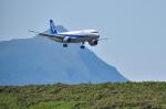 パンダさんが、八丈島空港で撮影した全日空 A320-211の航空フォト(飛行機 写真・画像)