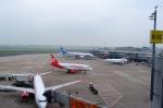 BIGFORCEさんが、デュッセルドルフ国際空港で撮影した全日空 787-8 Dreamlinerの航空フォト(写真)