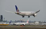 MizukinPaPaさんが、成田国際空港で撮影したユナイテッド航空 787-8 Dreamlinerの航空フォト(写真)