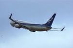 BELL602さんが、新潟空港で撮影した全日空 737-881の航空フォト(写真)