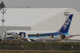 うっきーさんが、ペインフィールド空港で撮影した全日空 787-8 Dreamlinerの航空フォト(飛行機 写真・画像)