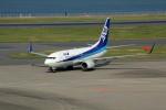 アイスコーヒーさんが、羽田空港で撮影した全日空 737-781の航空フォト(写真)