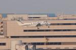 アイスコーヒーさんが、羽田空港で撮影したノエビア B300の航空フォト(飛行機 写真・画像)