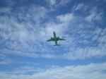 SKY☆101さんが、下地島空港で撮影した全日空 767-381の航空フォト(写真)