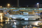 F-2A#533さんが、中部国際空港で撮影した日本航空 787-8 Dreamlinerの航空フォト(写真)