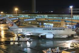 F-2A#533さんが、中部国際空港で撮影した日本航空 787-8 Dreamlinerの航空フォト(飛行機 写真・画像)