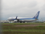 Dream Linerさんが、高知空港で撮影した全日空 737-881の航空フォト(写真)