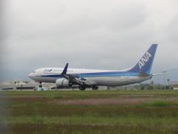 Dream Linerさんが、高知空港で撮影した全日空 737-881の航空フォト(飛行機 写真・画像)