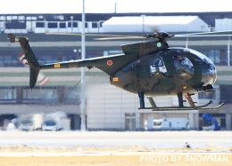 航空フォト:31306 陸上自衛隊 OH-6D