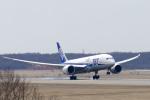 Yagamaniaさんが、新千歳空港で撮影した全日空 787-8 Dreamlinerの航空フォト(写真)