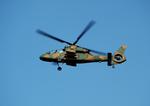 T.Sazenさんが、--で撮影した陸上自衛隊 OH-1の航空フォト(写真)