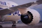 TakahitoIkawaさんが、松山空港で撮影した全日空 787-8 Dreamlinerの航空フォト(写真)