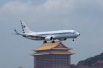 takeshifangさんが、台北松山空港で撮影した中華民国空軍 737-8ARの航空フォト(飛行機 写真・画像)