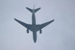 ヴェイパーさんが、木更津飛行場で撮影した全日空 777-281の航空フォト(飛行機 写真・画像)