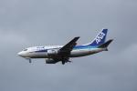 ATOMさんが、新千歳空港で撮影したANAウイングス 737-5L9の航空フォト(飛行機 写真・画像)